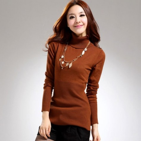 2013 Autumn Winter New Women Girls Turtle Neck Slim Design Long Sleeve Sweater Thick Warm Pullover Knitwear (2)-500x500